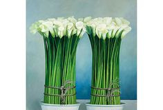 """Painting:  Calla Lilies; Oil on Linen Canvas; 46"""" x 46"""";  Dutch Touch"""