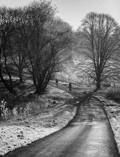Wintery ride up the Itchen Valley in Hampshire