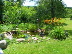 Built from blood, sweat, tears and much laughter....my pond.