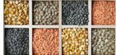 Les légumineuses ce sont les  3 catégories suivantes : - FÈVES  et HARICOTS SECS : haricots blancs, rouges, noirs, romains, pinto, mungo, adzuki, soja… - LENTILLES : vertes, brunes, noires, rouges… - POIS SECS : cassés, entiers, chiches… ( voir le site pour + d'infos)