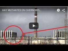 54 mejores imágenes de chernobyl   Catastrophe de tchernobyl ...