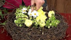 Ein Kranzgerüst mit Tulpen und Margeriten