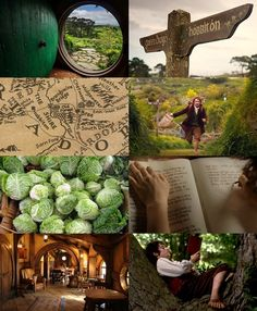 middle earth aesthetics: The Shire in summer and winter 1/2