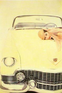 ❁ Soft Yellow ❁ Pale Yellow ❁ Pastel Yellow ❁ Light Yellow ❁ Lemon ❁ Vintage Vogue