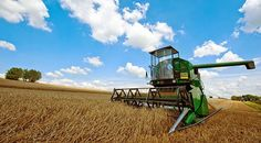 Cronache terrestri: L'Imu agricola per recuperare il bonus di 80 euro