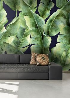 This tropical print palm tree wallpaper features large banana leaf prints on a dark background. Available in three materials with free delivery from www.wallsauce.com