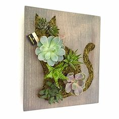 Custom Color Kitty Cat Shaped Succulent + Cacti Vertical Garden || Living Wall || Wall Planter || Hanging Planter