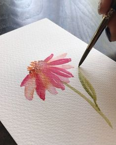 PROCESS VIDEO We must not forget the Pink coneflower stem and leaf! Happy Thursd… PROCESS VIDEO We must not forget the Pink coneflower stem and leaf! Happy Thursday everyone. Watercolor Painting Techniques, Watercolour Tutorials, Painting Lessons, Watercolor Landscape, Watercolour Painting, Watercolor Flowers, Painting & Drawing, Watercolors, Guache