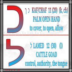 ך  כ   KAF/CHAF  11 (20)  (k, ch) PALM OPEN HAND to cover, to open, allow   ל  LAMED   12  (30)    (l) CATTLE GOAD control, authority, the tongue