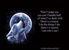 Don't judge me. You can't handle half of what I've dealt with. There's a reason I do the things I do. There's a reason I am who I am.  ~Indian quote