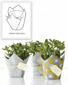 Ten Creative Ways to Wrap Potted Plants and Flowers – Quick and Easy Gift Ideas – bystephanielynn – Origami Easy Gifts, Creative Gifts, Homemade Gifts, Cool Gifts, Paper Crafts, Diy Crafts, Diy Paper, Tissue Paper, Paper Pot