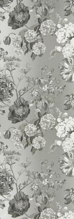 Alexandria Wallpaper A gorgeous and rich floral wallpaper in charcoal, greys and white on a gently shaded ombre graphite background.