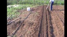 Увеличение плодородия почвы с минимальными материальными затратами на гр...