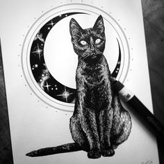 Black cat & moon | petercarrington
