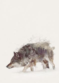 ART PRINTS BY ONE MAN WORKSHOP The Wolf III