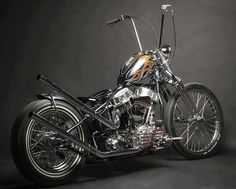 sweet Harley. http://pinterest.com/quinnproperties/ http://www.tumblr.com/blog/patrickquinnproperties