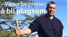 Mens det fortsatt er full vinter i nord, er våren godt i gang i Sør-Norge. Det liker ikke utflytta finnmarking Jan-Eilert Pedersen.
