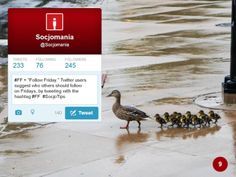 50 Twitter Tips (9). Full presentation: https://www.slideshare.net/Socjomania/the-ultimate-guide-to-twitter-50-useful-tips  #Twitter #TwitterTips #SocialMedia #SocialMediaTips