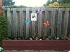 Monarch Waystation at Just Like Home Childcare & Preschool, Inc.