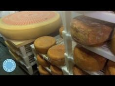Martha Stewart Tours New York's Famous Murray's Cheese Caves - Martha St...
