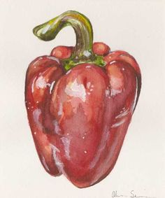 Red Bell Pepper, by Alicia Severson. Original watercolor painting.