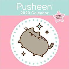 Cdm 2020 Calendrier.Calendar Take Me Back To Paradise Ideas