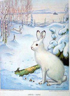 Vintage School, Flora And Fauna, Applique, Scrap, Nostalgia, Winter, Painting, Animals, Image