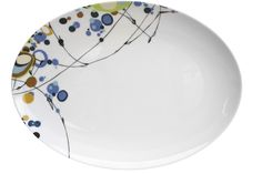 Brand new Kites serving platter