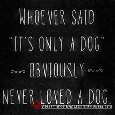"Dogs:  ""Whoever said 'It's only a #dog"" obviously never loved a dog."""
