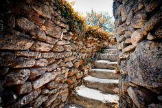 "intrare in ""Gradina Labirint""  , entry in ""Maze Garden""  , Eintrag im ""Labyrinth Garten""  , l'entrée dans ""Le Jardin Labyrinthe"""