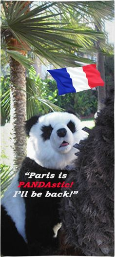 Panda Beach Towel.Your fashionable, flamboyant Souvenir directly from Paris, France  proves that you travel the World,  and are  really  not  a couch potato!   Paris, France, vin, cheese, fashion, travel, souvenir, holiday, gift, love, great, present, novelty, World, apparel, extra, OMG, BFF, couch potato, humour, gag, cool, Miniskirt, cover, cellphone, I-Phone, laptop, computer, mug, glas, kitchen, tablet, Google, shower curtain, sexy