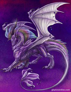 Drachen bild 6