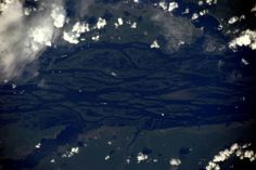Tim Peake, Amazon Rainforest, Lush Green, Planet Earth, Tree Branches, Cosmos, Twitter, Cool Pictures, Planets