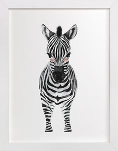 baby animal.zebra by Cass Loh at minted.com