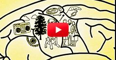 I wish I'd seen this video a long time ago. It really helps to understand what's going on. | The Alzheimer's Site Blog