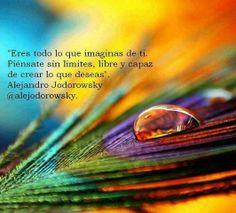 Eres todo lo que imaginas de ti. PIÉNSATE SIN LÍMITES, libre y capaz de crear lo que deseas. - Alejandro Jodorowsky