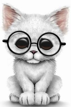 White Kitten in Glasses