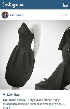 Love this Zac Posen dress - the cut, fit and fabric