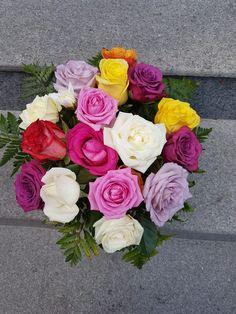 Fall Flowers, Autumn, Collection, Autumn Flowers, Fall Season, Fall