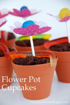 """Don't Walk. RUN TO TARGET to pick up these super cute silicone reusable """"flowerpot"""" cupcake molds! I promise you, I only bought three..."""