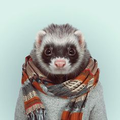 FERRET by Yago Partal  for ZOO PORTRAITS