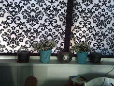 Witte Campanula's in de vensterbank