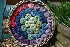 Tasty basket of Lleyni Mini Wool Pots