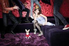 Selena Gomez with a chihuahua