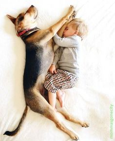Pin By Beverly Burnett On Theo And Beau Pinterest - Theo beau cutest animal human pairing ever
