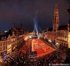Carpet flowers 2012, Grand Place, Brussels, Belgium by Batistini Gaston, via Flickr