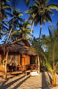 Phillipines. Beach Hut at Coral Cay Resort, Siquijor
