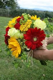 Image result for gerbera daisy sprays