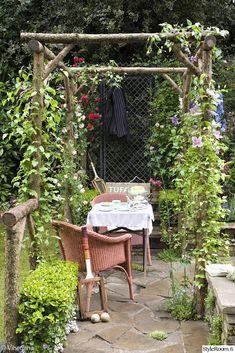 pergola,puutarhatuoli,puutarhapöytä,köynnöskasvi,oleskelupaikka,puutarha