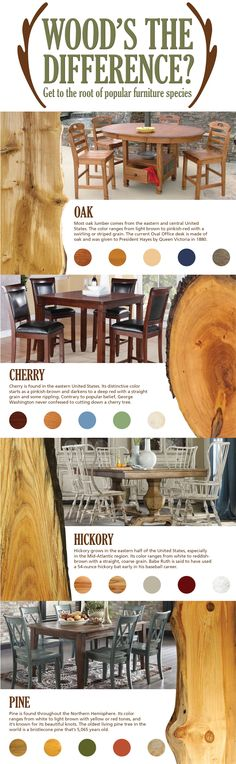 Discover the popular types of wood for furniture, how to identify them and their unique characteristics.